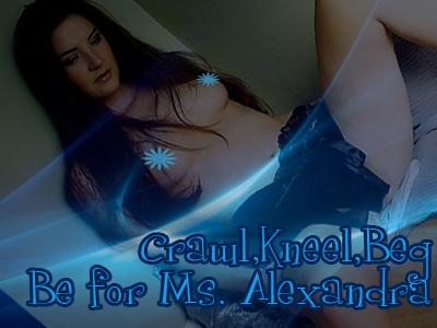 Crawl, Kneel & Beg for Ms. Alexandra