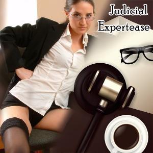 Judicial Expertease